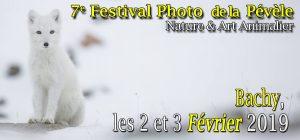 Festival de la Pélève